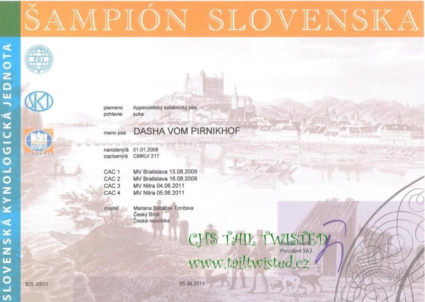 Slovenský šampion